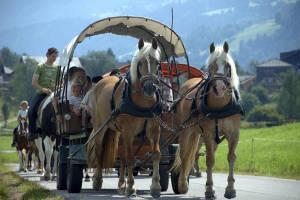 Aich Pony-Western-Tour Beim Reiterhof Aigner
