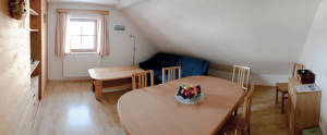 Wohnbereich mit Küche in der Ferienwohnung Marie
