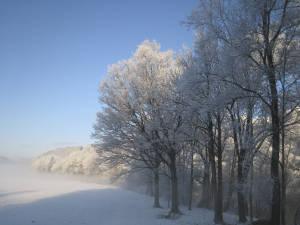 Winterlandschaft Am Ennsboden